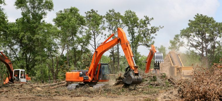 land clearing Ashbury experts