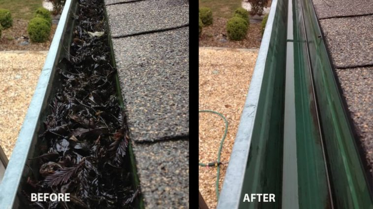 gutter cleaning Chatswood